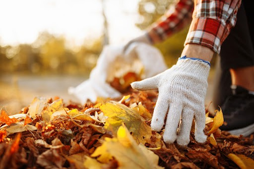 man with white gloves gathering pile of fall leaves
